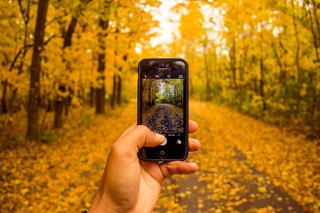 fotografování telefonem